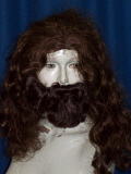 Where to rent WIG BEARD SET, BIBLICAL in Howell MI