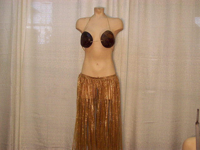 Grass Skirt Coconut Bra Lei Rentals Howell Mi Where To