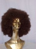 Where to rent WIG, AFRO in Howell MI