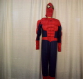 Rental store for SPIDERMAN, MUSCLE SUIT in Howell MI