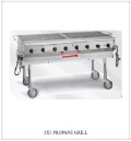 Rental store for GRILL, PROPANE, 2  X 5 in Howell MI
